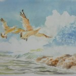 Water Color Picture Collection 27
